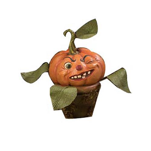 Cheeky Pumpkin Perennial