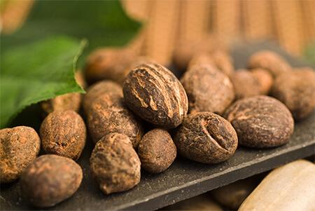 Shea Nut Butter