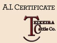 TEX Demand 2791 Certificte