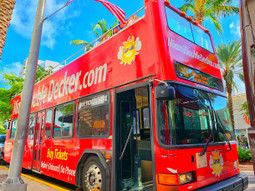 Miami City Tour Hop-On Hop-Off  (1-Day Pass)