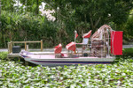 Everglades Air Boat Tour MiamiSightseeingTours.com