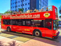 Sightseeing Bus Tour of Miami