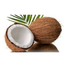 Coconut Extra 30ML Flavoring - The Flavor Apprentice