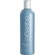 Aquage Color Protecting Shampoo 12 oz