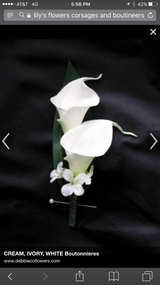 2 Calla Lilies accented with greens - PICKUP ONLY!  Please note any color preferences and time of pickup in notes.