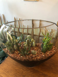 "Let them know how much you care - this beautiful hand blown glass terrarium measures 17"" wide by 13"" inches tall and has a unique almost oval shape.  We fill it with layers of rock, soil and gravel and assorted cacti.  We add fresh floral stems in tubes  for a one of a kind expression of your condolences."