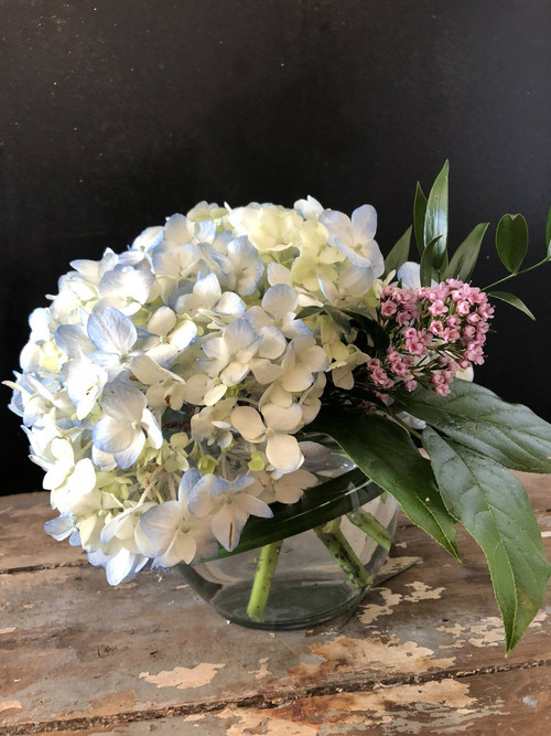 Make her  Day with the lovely calming sweetness of hydrangeas in a clear glass bowl,  accented with lily grass, ruscus, salal and wax flower