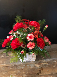 Basket filled full of red and white carnations and Christmas greens will brighten a spot in your home
