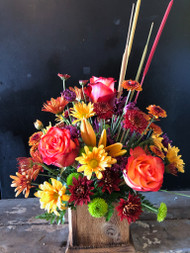Orange roses and lilies nestled among the colors of fall in oranges, yellows, rusts and greens, accented with colored cat tails and arranged in a  cedar planter box hand made here in the Ozarks by a local craftsman.