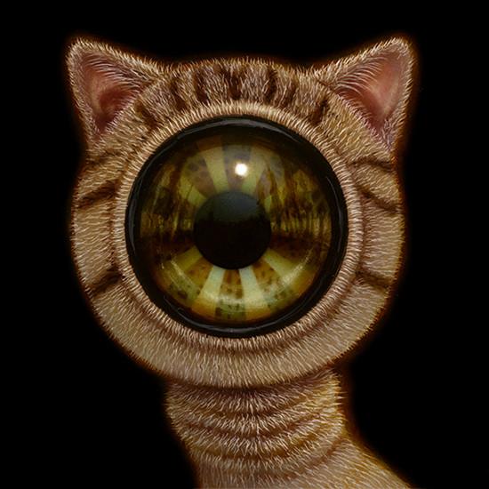 EyeCat 07