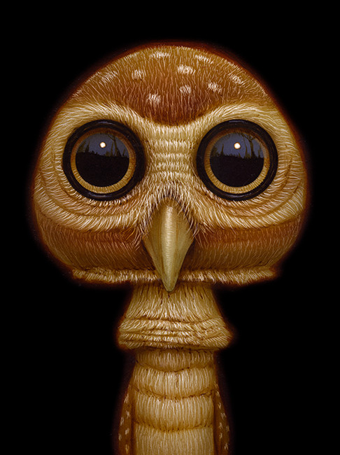 Shroom Owl