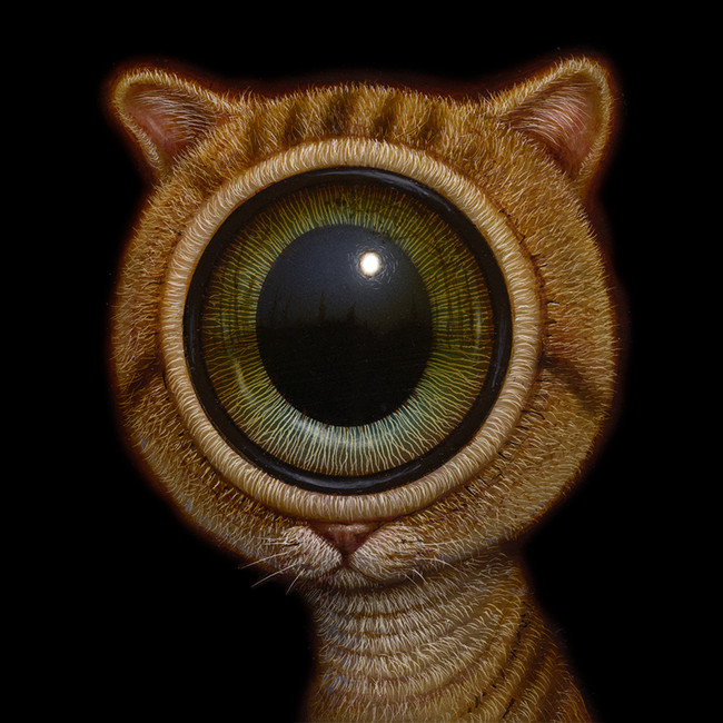 EyeCat 08