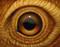 Eye 129