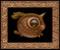 Lucid Dreamer 063 framed