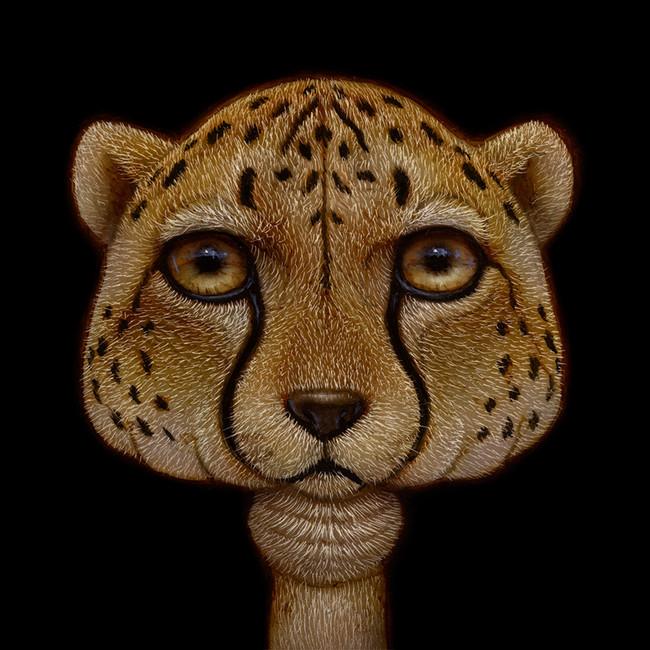 Shroom Cheetah
