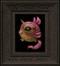 Lucid Dreamer 071 framed