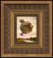 Lucid Dreamer 075 framed