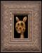 Rabbit 06 framed