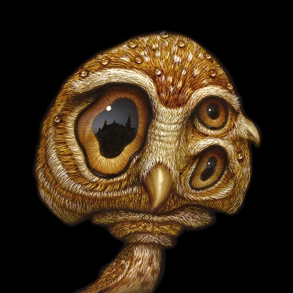Shroom Owl 03