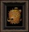 Dunamis 06 framed