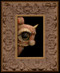 Peek 235 framed