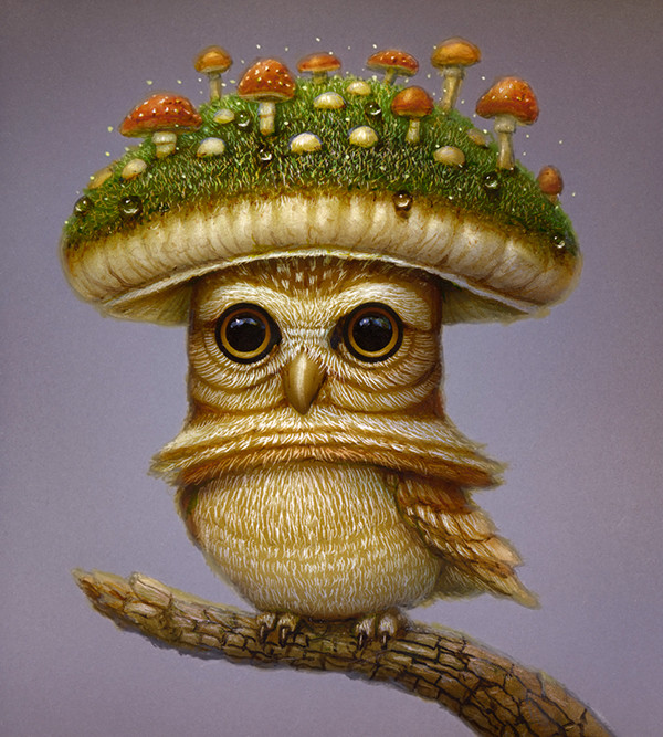 Fungus Owl