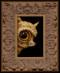 peek 246 framed