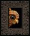 Peek 248 framed