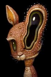 Rabbit 010