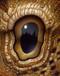 Eye 143