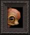 Peek 269 framed