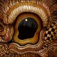 Eye 146