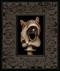 ShroomCat 019 framed