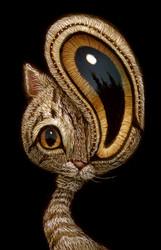 Cat 037
