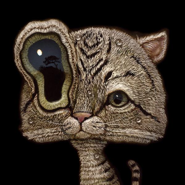 Cat 038
