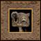 Cat 038 framed