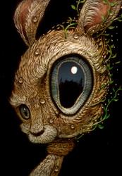 Rabbit 016