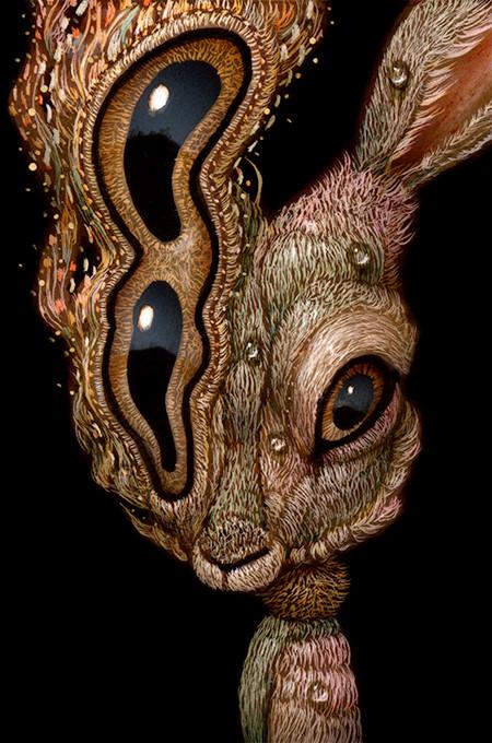 Rabbit 017