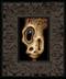 Skully 041 framed
