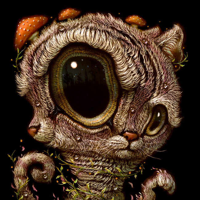 Cat 043