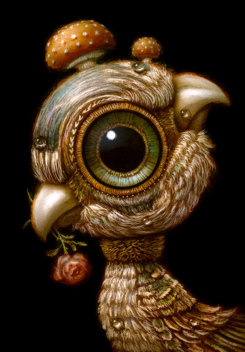 Bird 017