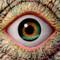 Inner Eye