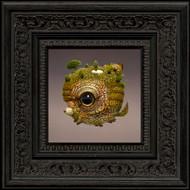 Dunamis 017 framed