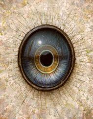 Eye 124