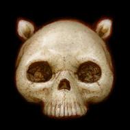 Skully 024