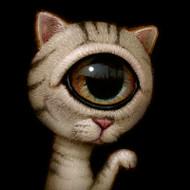 EyeCat 03