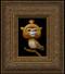 Monkey Bird 03 framed