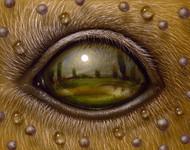 Eye 126