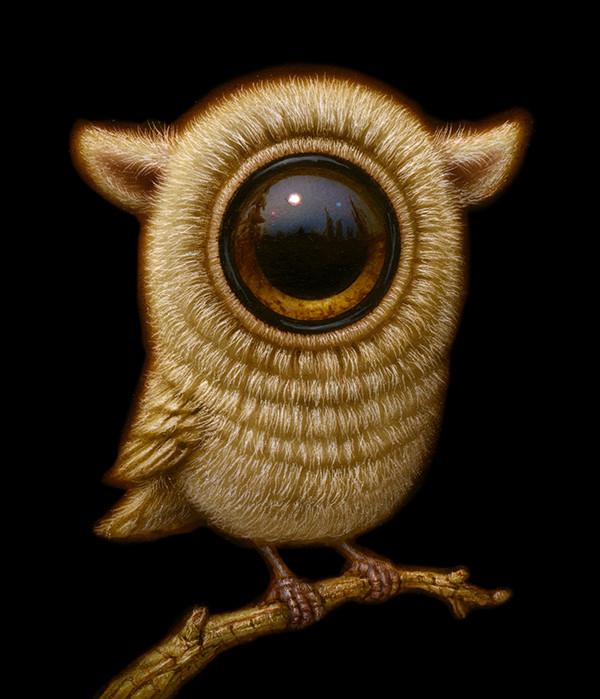 EyeBird 014