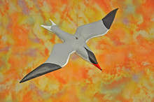 Miniature Flying Tern